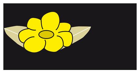 Gärtnerei Guttenberger  - Fröschl in Neustadt an der Donau